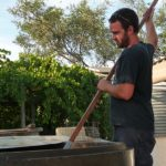 Winemaking Mclaren Vale Region